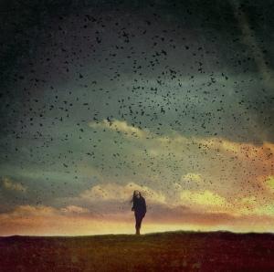 solitude-flickr